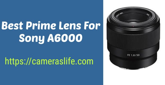 Best Prime Lens for Sonay A6000