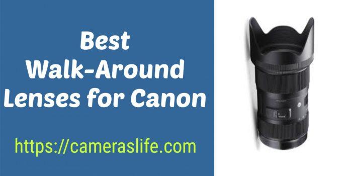 Best Walk-Around Lenses for Canon